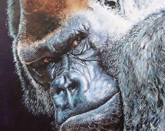 Gorilla - Mounted Print