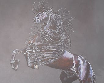 Stallion print - Mounted
