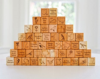 USA State Symbols Block Set - Natural and Organic - United States of America Geography