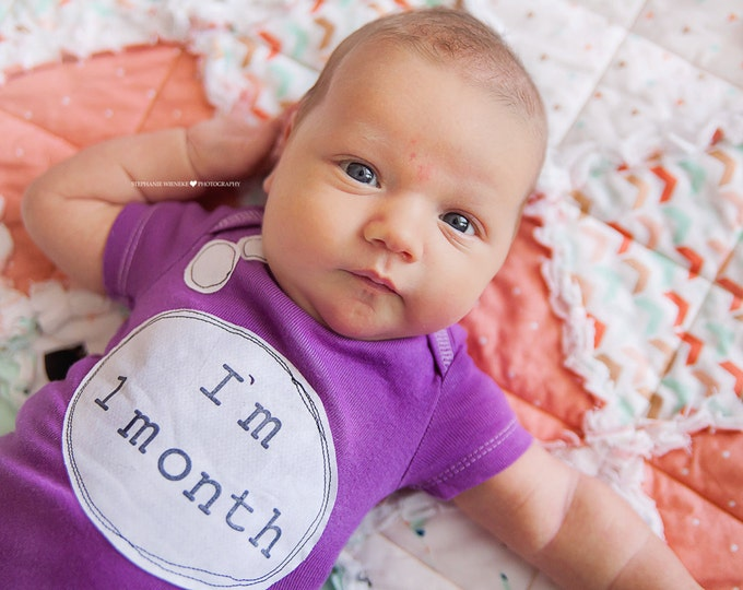 "Swanky Shank Hand-Dyed Gender Neutral Monthly Bodysuits ""I'm One Month""; Set of THREE monthly bodysuits"
