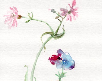 Flowers painting watercolor original, wild flowers botanic floral illustration