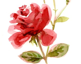 Red Rose print, Giclee print from original watercolor painting, Valentines gift