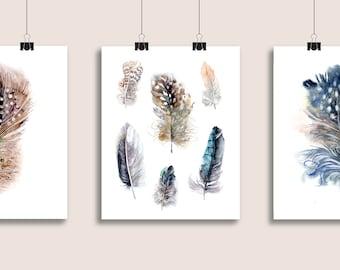 Feathers print, set of 3, 8x10 fine art prints of original watercolor