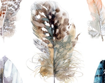 Feathers print, 8x10 fine art print of original watercolor