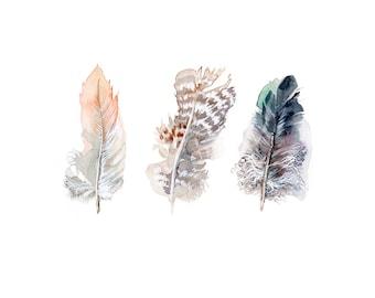 Feathers print, modern interior home decor, 5x7 fine art print of original watercolor