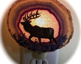 Agate Night Lights  Sensor w 7 watt bulb Hand Painted Oils ELK Night Light