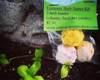 Economy Herb Kit - Basil, Parsely, & Cilantro