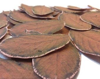 Orange/Brown Wildflower Seeded Fall Leaves