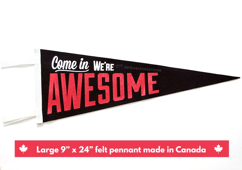 Come In We're Awesome ©™  Vintage Retro Wool Felt Pennant image 0