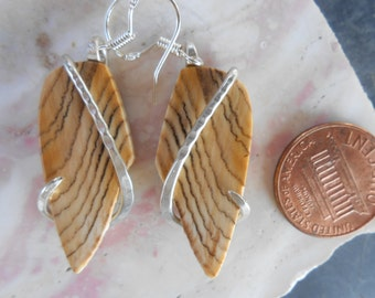Hells Canyon Petrified Wood Silver Wrapped Earrings