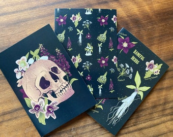Baneful Herbs- A6 greetings card set! Blank inside, any occasion, mandrake, multipack, Halloween , botanical, witchy, witchcraft, gothic