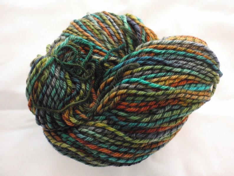 Ellyn Cooper Yarn Sonnets Hand Dyed Lets Twist Wool Skein Worsted Indigo Girls