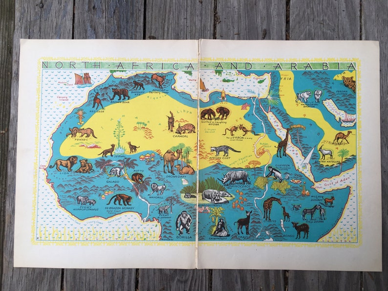 North African Animal Map for Kids / Vintage Animals of Africa | Etsy