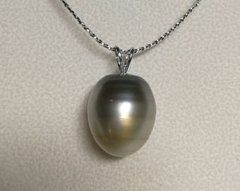 Ultra Luster 14K White Gold 15.5 mm Huge Size Tahitian Cultured Pearl Pendant, Pendant only