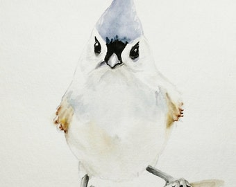 Tufted Titmouse Watercolor Painting / Bird Watercolor Painting