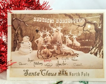 Christmas Card with All of the Reindeer