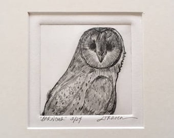 Barn Owl Limited Edition Drypoint Print