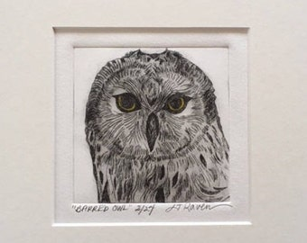 Barred Owl Limited Edition Drypoint Print