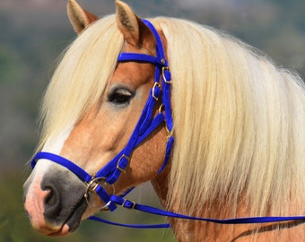Horse Size**HALTER BRIDLE & REINS Quick Change Style made from Beta Biothane (Solid Colored)