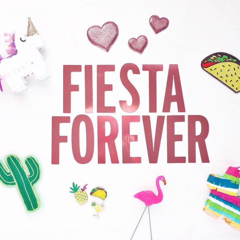 Fiesta Forever Party Banner/ Fiesta Party Decor/ Llama image 0
