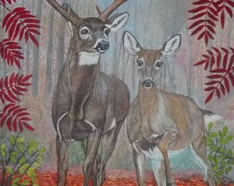 """original oil painting   Careful steps of White tailed Deer   size 24""""x 30"""" x 5/8"""""""