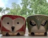 A flock of little owl planters, ceramic succulent planters, pastel trio of bird containers