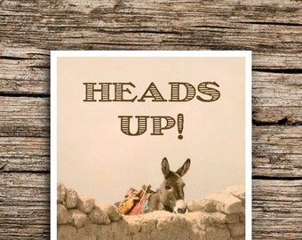 Heads Up! Postcard Save the Date // Rustic Western Wedding Mexico New Mexico Texas Burro Post Card Wedding Invitation Rustic Fun Donkey