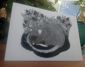 Illustrated Greetings Card - 'The Napping Rat'.