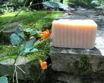 Jewelweed Natural Handmade Soap, Poison Ivy, Cold Process, Unscented, VEGAN