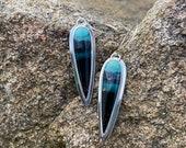 Petrified Opalized Wood Earrings