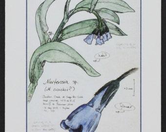 Chiming Bells -- botanical art notecard, blank