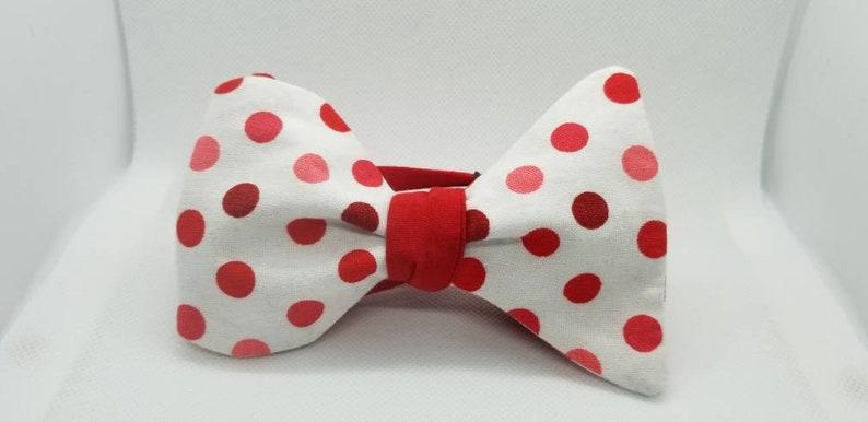 Be My Valentine Designer 2 in 1 Freestyle BowTieByEDJ image 0