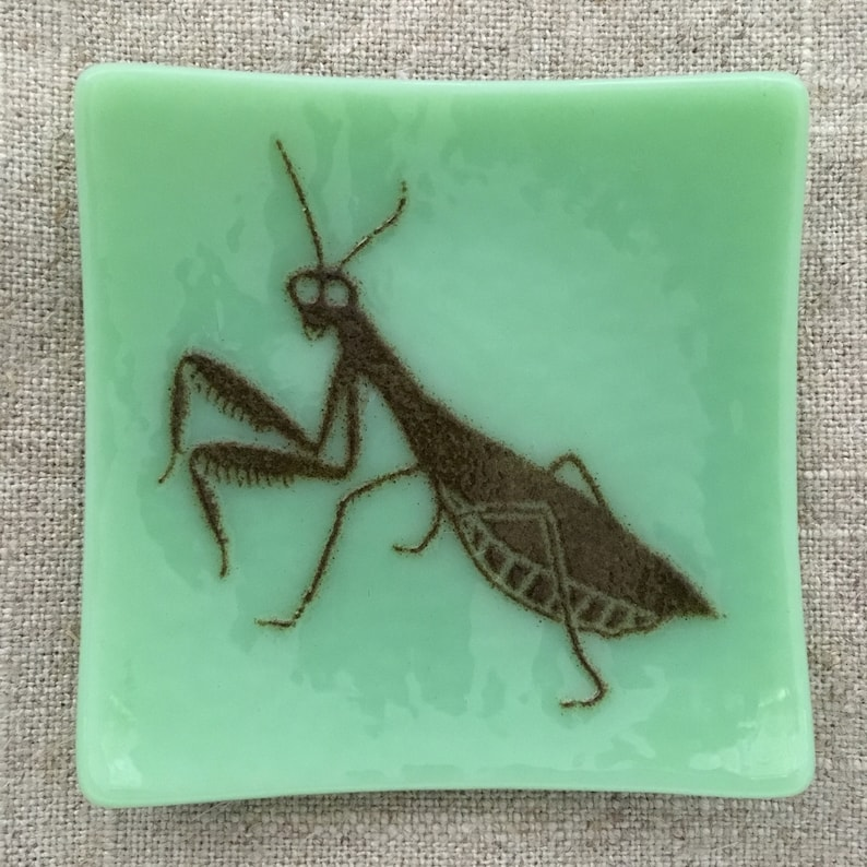 Praying Mantis Eco-friendly Fused Glass Plate 2 colors Mint/Black