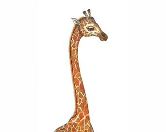 Giraffe Giclee Print