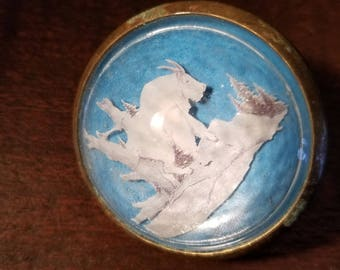 Vintage Single Paperweight Style Horse Bridle Rosette Mountain Goat Ram Domed