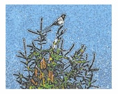 Sale 10 - Holiday Cards - Magpie Tree Blank Notecards