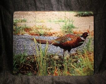 Large Glass Cutting Board - Pheasant 12 in  x 15 in