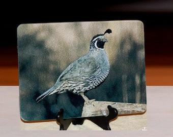 Glass Cutting Board - California Quail 7.75in x 10.75in