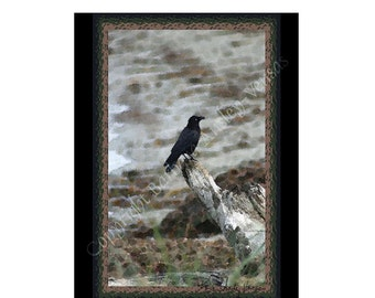 10 Crow Blank Note Cards