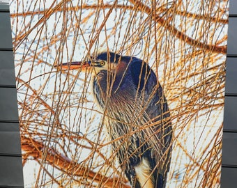 """Heron in the Willow Canvas Print 26"""" x 16"""" x 1.5"""""""