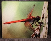 Large Glass Cutting Board - Red Dragonfly - 12 in  x 15 in