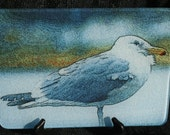 Glass Cutting Board - Gull 7.75in  x 10.75in