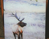 Glass Cutting Board - Elk Standing 7.75in  x 10.75in