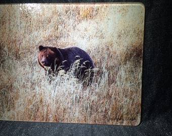 Large Glass Cutting Board - Grizzly Bear - 12in  x 15in