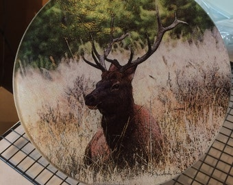 Round Glass Cutting Board - Elk Sitting  -  8 inch