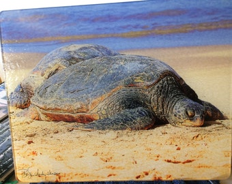 Sea Turtle Large Glass Cutting Board  - 12 in x 15 in