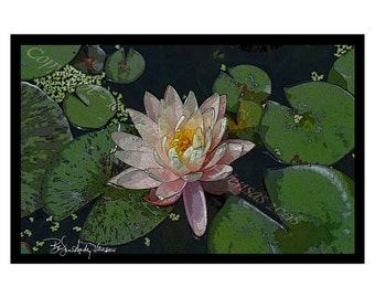 10 Peach Water Lily Blank Note Cards