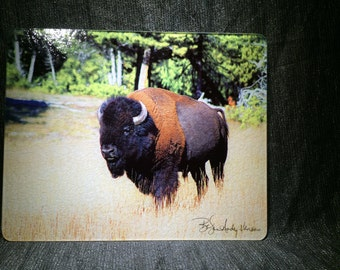 Large Glass Cutting Board - Bison - 12 in x 15 in