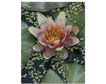 10 Pink Water Lily Blank Note Cards