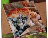 "Ceramic Decorative Tile -  Best Friends 8"" x 8"""